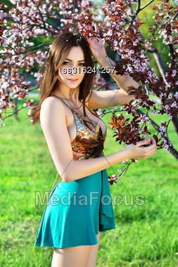 Slim Sexy Woman In Frank Dress Posing Near Blooming Tree Stock Photo
