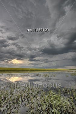 Slough Pond And Crop Saskatchewan Canada Stock Photo