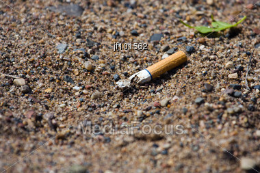 Smoked Cigarette Smashed And Littered On The Ground Stock Photo