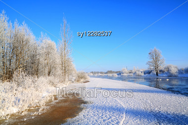 Snow Bushes On Coast River Stock Photo