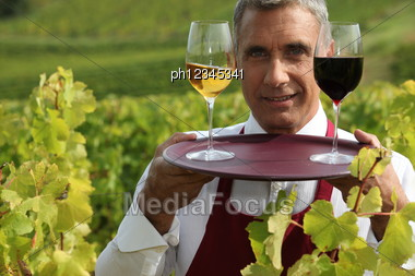 Sommelier With A Glass Each Of Red And White Wines In A Vineyard Stock Photo