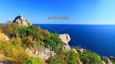 South Part Of Crimea Peninsula, Beach Landscape. Pine Stock Photo