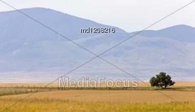 Southern Alberta Rural Scene Prairie Near Montana Milk River Stock Photo