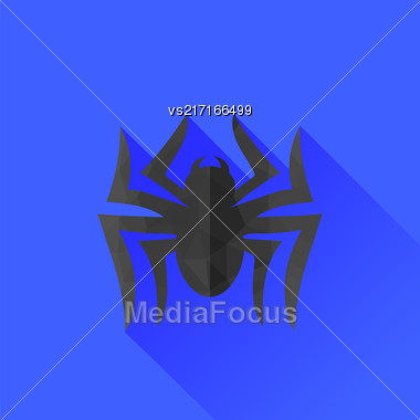 Spider Grey Silhouette Isolated On Blue Background. Long Shadow Stock Photo