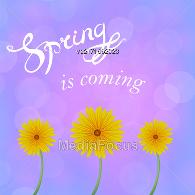 Spring Lettering Design. Banner With A Blurred Pink Blue Background And Text Stock Photo