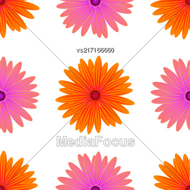Spring Pink Orange Flowers Isolated On White Background. Seamless Flower Pattern Stock Photo
