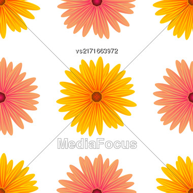 Spring Pink Yellow Flowers Isolated On White Background. Seamless Flower Pattern Stock Photo