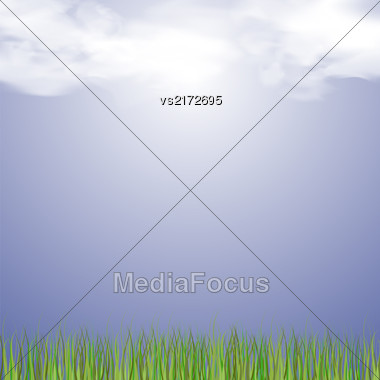 Spring Sun Rays And Fresh Green Grass Stock Photo