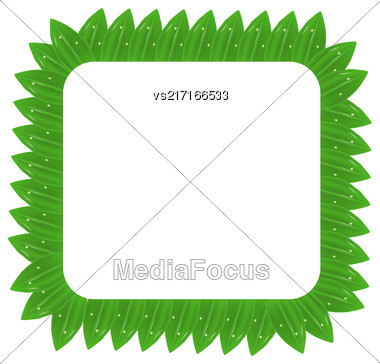 Square Green Leaves Frame Isolated On White Background Stock Photo