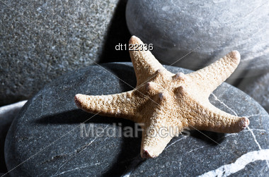 Starfish. Abstract Summer Backgrounds With Star Fish And Pebble Stock Photo