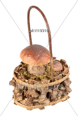 Still-life Of Single Basket With Two Brown Mushrooms Closeup Studio Photography Stock Photo
