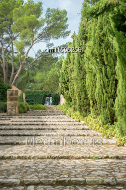 Stone Staircase With Trees In Park Stock Photo