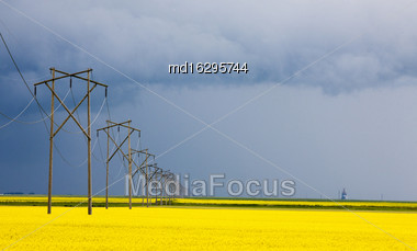 Storm Clouds Saskatchewan Electrical Power Lines Yellow Crop Stock Photo