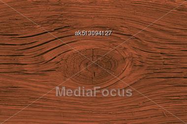 Stump Background Stock Photo