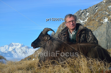 Succesful Hunter With The Introduced Himalayan Goat, Or Tahr, (Hemitragus Jemlahicus), South Westland, South Island, New Zealand, With Mount Cook In The Background Stock Photo