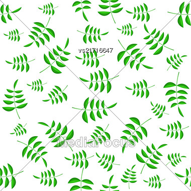 Summer Green Leaves Isolated On White Background. Seamless Different Leaves Pattern Stock Photo