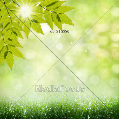 Summer Time. Abstract Optimistic Backgrounds Stock Photo