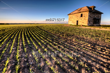 Sunset Light Saskatchewan Farm Abandoned Stone House Stock Photo