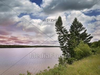Sunset On A Lake And Pine Trees Stock Photo