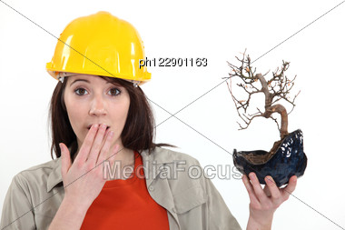 Surprised Tradeswoman Holding A Bonsai Plant Stock Photo