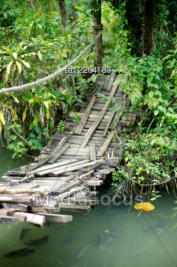 Suspension Bridge Over A Reservoir With Fishes In Catfish Farm In Thailand Stock Photo