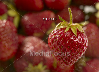 Sweet Juicy Strawberry In Heap Over Unfocused Background Stock Photo