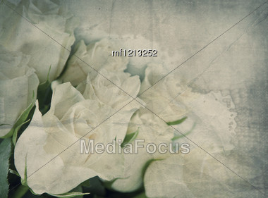 Textured Old Paper With Beautiful Bunch Of White Rose Stock Photo