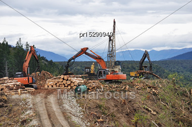 Timber Hauler Drags Pinus Radiata Logs To A Loading Site At A Forestry Block In Westland Stock Photo