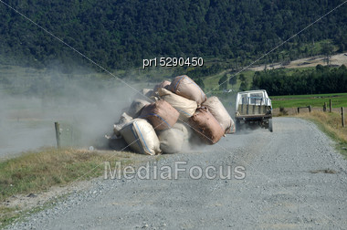 Trailer Load Of Wool Sacks Falling Off A Farm Trailer Stock Photo