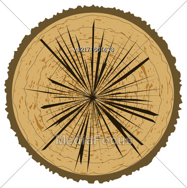 Tree Rings Background And Saw Cut Tree Trunk. Wood Icon Stock Photo