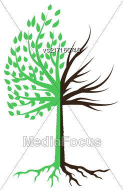 Tree Silhouette Icon Isolated On White Background Stock Photo