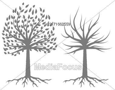 Trees Gray Silhouettes Isolated On White Background Stock Photo