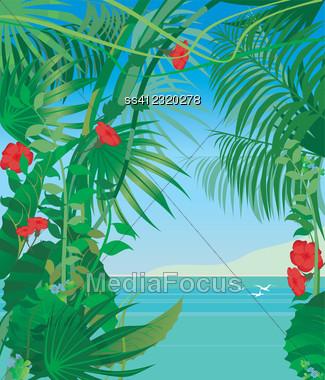 Tropic Sea, Tropic Plants Stock Photo