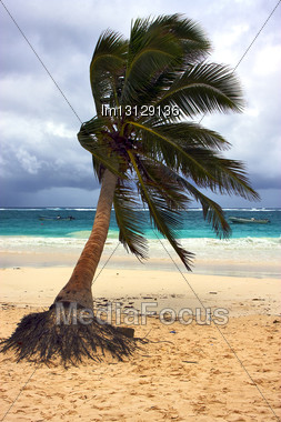 Tropical Lagoon Hill Navigable Froth Cloudy Sea Weed And Coastline In Mexico Playa Del Carmen Stock Photo