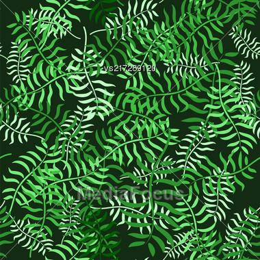 Tropical Palm Leaves Seamless Pattern. Jungle Exotic Floral Background Stock Photo