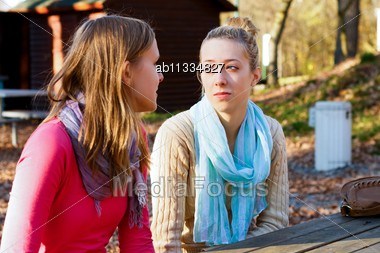 Two Beautiful Young Women Talking In The Park Stock Photo