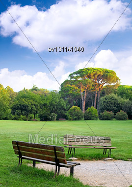 Two Benches In The Lawn During Early Spring Day Stock Photo