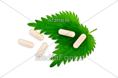 Two Green Nettle Leaf, Five Beige Capsules Stock Photo