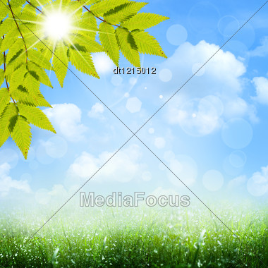 Under The Blue Skies. Abstract Spring And Summer Backgrounds Stock Photo