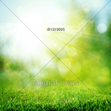 Under The Bright Sun. Abstract Natural Backgrounds Stock Photo