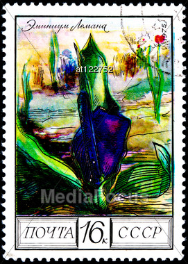 "USSR - CIRCA 1975: A Postage Stamp Shows Image Of A Araceae Flower With The Designation ""Eminium Lehmanii"", Circa 1975 Stock Photo"