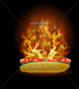 Vector Burning Fresh Hot Dog With Ketchup Isolated On Black Background Stock Photo