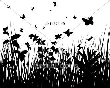 Grass Silhouettes Backgrounds With Butterflies Stock Photo