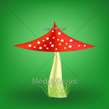 Vector Poisonous Mushroom On Soft Green Background. Fly Agaric Stock Photo