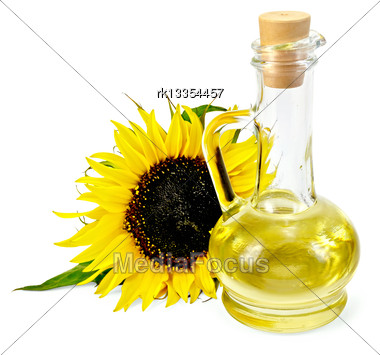 Vegetable Oil In A Glass Carafe With A Sunflower Isolated On A White Background Stock Photo