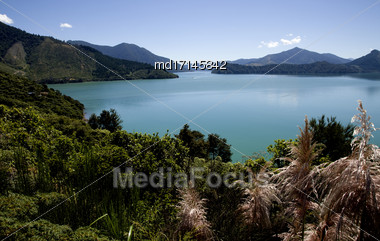 View Marlborough New Zealand South Island Ocean Stock Photo
