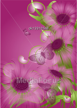 Violet Background With Unusual Purple Flowers Stock Photo