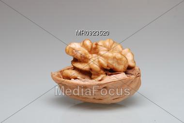 Walnut on gray Stock Photo