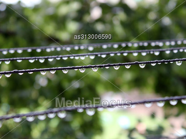 Water Drops On Wires Abreast After A Rain Shine And Sparkle Stock Photo