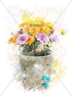Watercolor Digital Painting Of Autumn Chrysanthemums Stock Photo